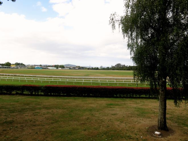 racecourse, view, hotel, vacation, holiday, rotorua, rydges,