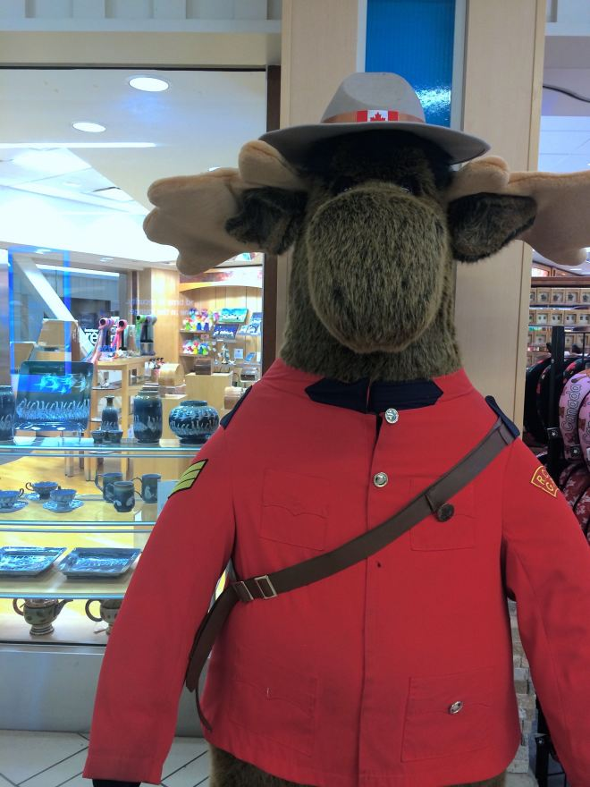 canada, moose, Vancouver Airport