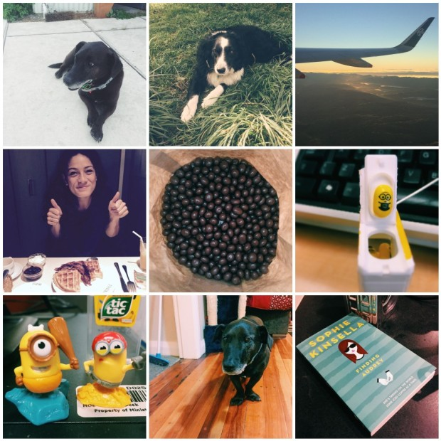 weekly gratitude list, the little things, grateful, gratitude, gratitude list